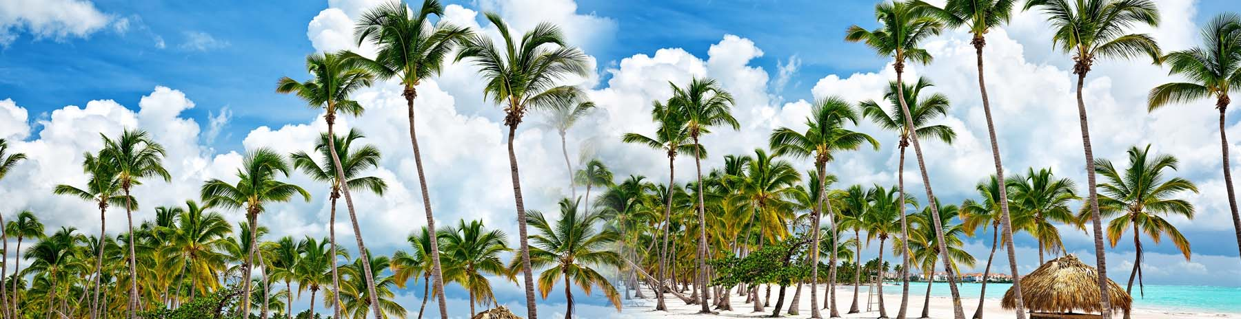 Picturesque Punta Cana